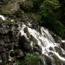 Whiskey Falls waterfall, Lake Rotoiti Circuit.