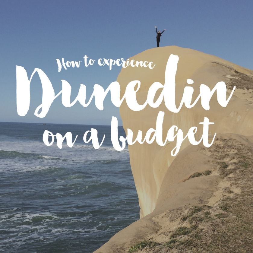 How To Explore Dunedin on a Budget.